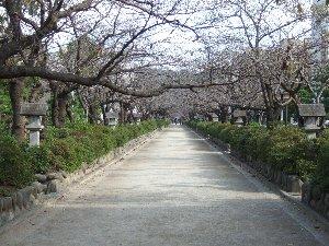 散歩051.jpg