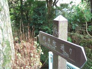 散歩059.jpg
